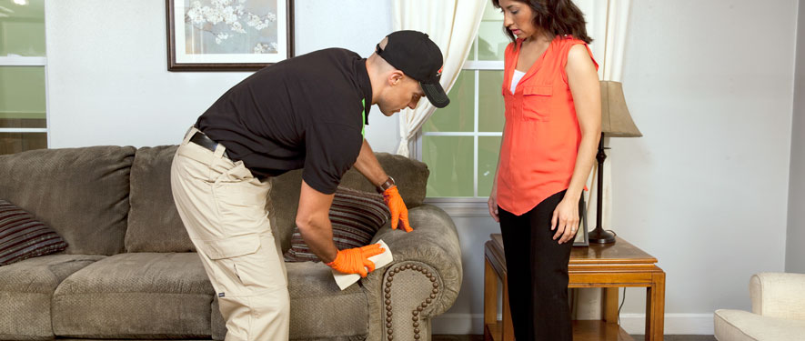 Coronado, CA carpet upholstery cleaning